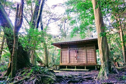 「ニッポン島旅」の日忌様(ひいみさま)とは?風習や祟りや幽霊は出るの?