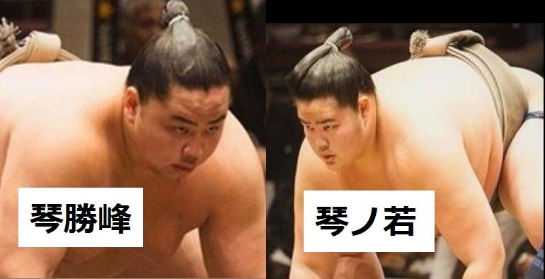 琴ノ若と琴勝峰はイケメンで似てるけど兄弟?力士情報と成績紹介!